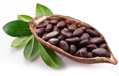 cocoa-bean-kakao-goji-energia-witalność